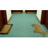 "Door mat ""Good Dog"""