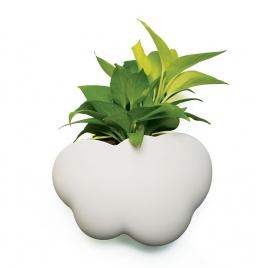 """Shelf or plant-pot """"Cloud"""""""