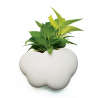 "Shelf or plant-pot ""Cloud"""