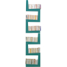 Turquoise TwoSnake bookcase 2nd choice