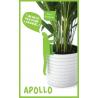 Etiquette-tuteur Apollo de la collection Coup d'Pouce design Thibault Pougeoise sur LaCorbeille.fr