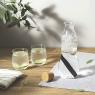 Carafe en verre avec filtre à charbon de la marque Black and Blum sur LaCorbeille.fr