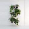 Vegetable curtain Etcetera
