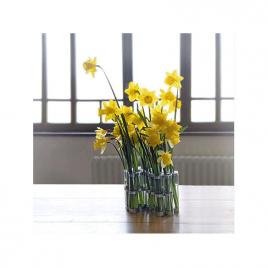 Le vase d'Avril par Tsé Tsé sur LaCorbeille.fr