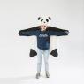 Disguise Panda