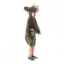 Dinosaure : déguisement, tapis et plaid