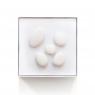Patère Galet en porcelaine X5 de la marque Maomi sur LaCorbeille.fr