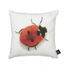 Cushion Ladybird - By Nord
